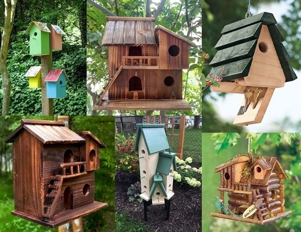 Bird Houses as Outdoor Decorations
